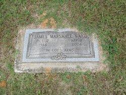 "James Marshall ""Jimmy"" Ward"