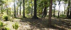 Ira Maddux Cemetery