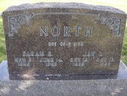 Sarah Ellen <I>McAllister</I> North