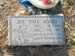 Joe Dale Adams