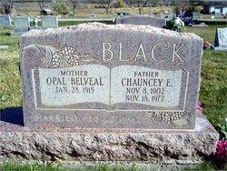Chauncey Elmer Black