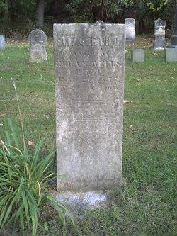 Elizabeth G Wells