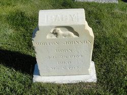 Morton Johnson