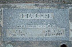 Arthur Edward Thatcher