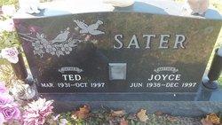 Joyce Sater