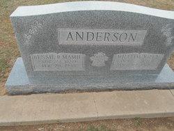 William Wylie Anderson