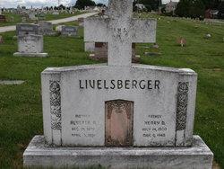 Henry David Livelsberger