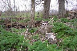 McDaniel - Carrington Family Cemetery