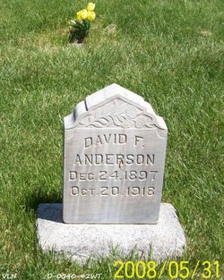 David Forest Anderson