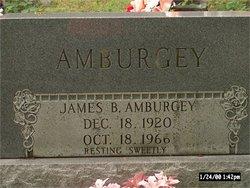 James Balford Amburgey