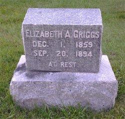 Elizabeth A Griggs