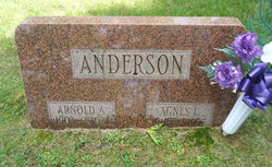 Agnes <I>Larson</I> Anderson