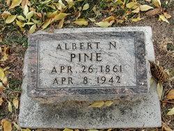 Albert Newton Pine
