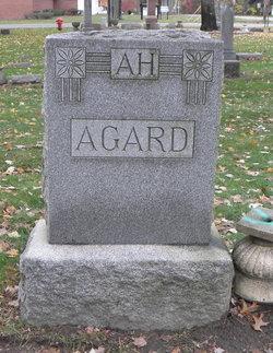 Andrew Hansen Agard