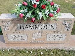 Nellie Pauline Hammock