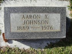 Aaron X Johnson