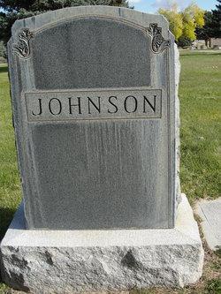Eliza Ann Johnson