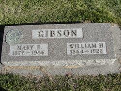 William H Gibson