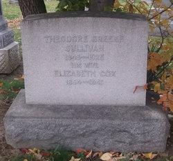 Theodore Greene Sullivan, Sr