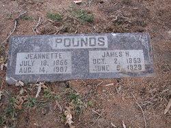 James Harding Pounds