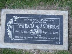 Patricia A Anderson