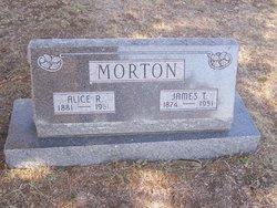 James Tannahill Morton