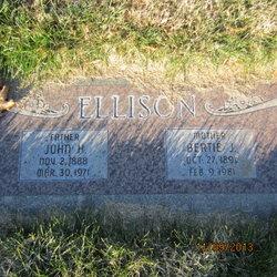 Bertie Elizabeth <I>Jones</I> Ellison