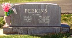 Hyrum Corry Perkins