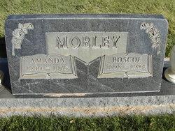 Amanda Ellen Mobley