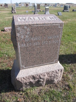 Nathaniel J Walden