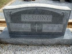 Steve Anton Neslony
