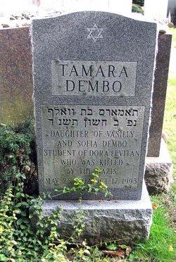 Dr Tamara Dembo