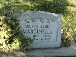 Andrew James Martinelli