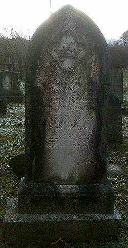 Fanny L. Bushnell