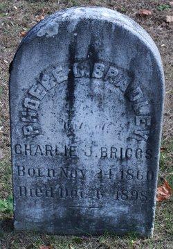 Phoebe Clarinda <I>Bradley</I> Briggs