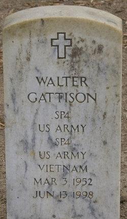 Walter Gattison