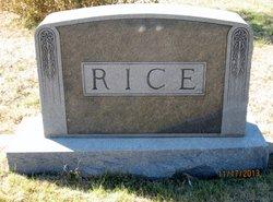 George Washington Rice