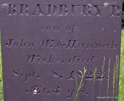 Bradbury P. Weeks