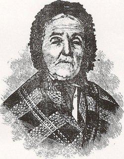 Phebe Ann <I>Woodmansee</I> Conway Driskill