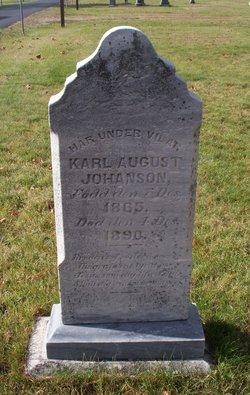 Karl August Johanson