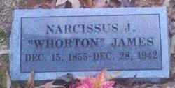 Narcissus J <I>Wharton</I> James