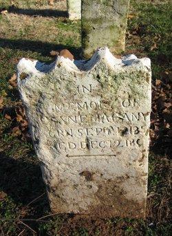 Susan Elizabeth Mahanay