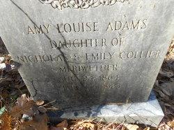 Amy Louise <I>Meriwether</I> Adams