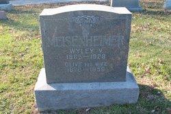 Wiley Valentine Meisenheimer