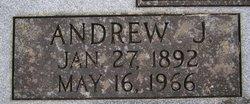 Andrew Johnson Abney