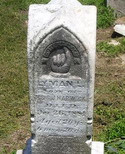 Lyman L Harwick