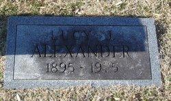 Lucy J Alexander
