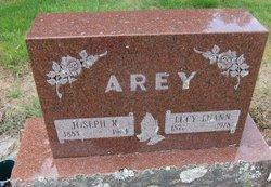 Lucy Luann Arey
