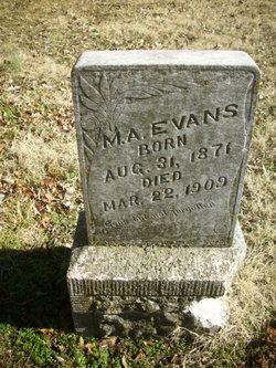 M. A. Evans