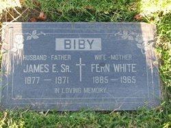 Fern <I>White</I> Biby